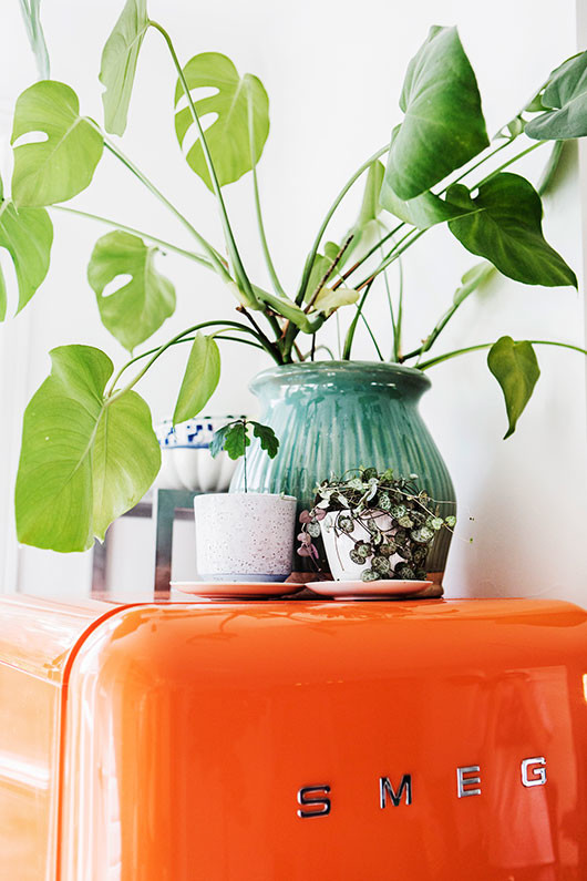 elsa billgren's bright orange smeg fridge and potted plants / sfgirlbybay