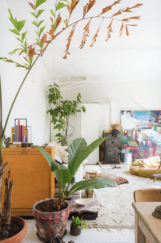 houseplants in ornate pots in bohemian modern living room via greenteriors book / sfgirlbybay