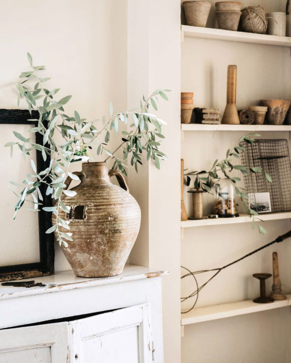 rustic jug with olive branch. / sfgirlbybay