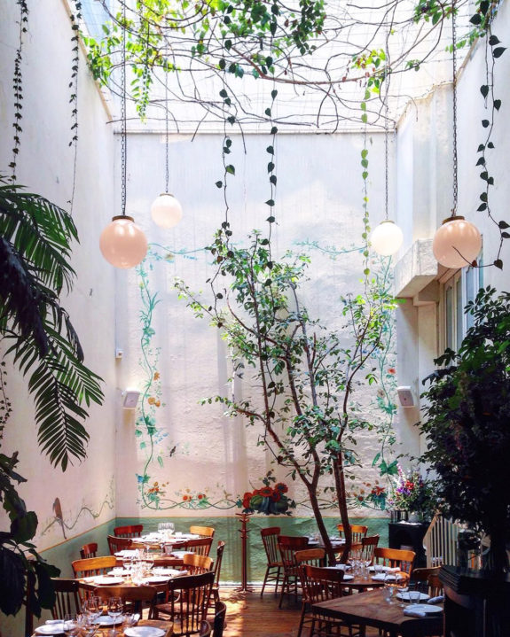 hanging green plants inside rosetta dining room in mexico city. / sfgirlbybay