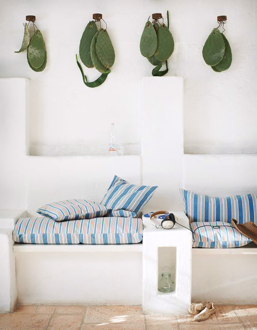 cacti hanging above white built-in benches with blue and white striped upholstery / sfgirlbybay