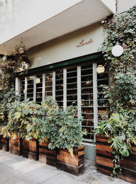 plant-filled wood planter boxes outside of lardo restaurant in mexico city. / sfgirlbybay